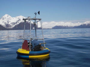Boje in der Resurrection Bay, Alaska