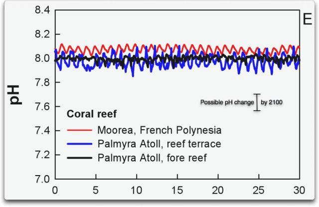pH-Werte in Korallenriffen
