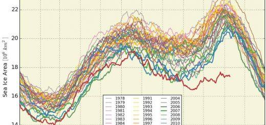 Globale Meereisbedeckung
